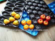 ecofriendly cheap plastic disposable chocolate tray