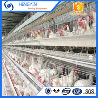 China new product layer animal cages A frame chicken cage for sale