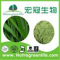 natureza orgânica certificada cevada grama de pó