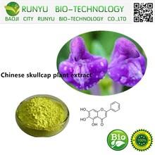 Chinese skullcap plant extract, baicalein