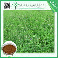Hot selling health care product Alfalfa Extract 50:1 in bulk supply