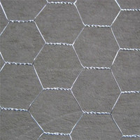 Low Price Building Your Dream Pvc Coated Hexagonal Wire Mesh