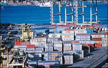 sea freight rates from canada to india from shenzhen--skype:bhc-shipping003