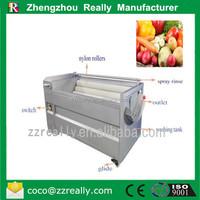 manufacturer RE-1000 electric pumpkin washing machine