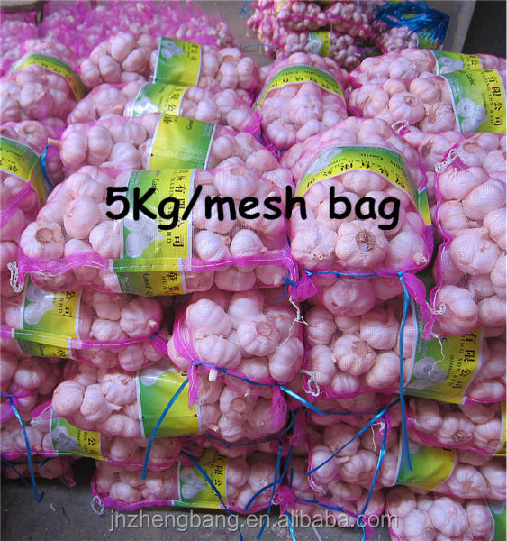 New fresh natural garlic with low price