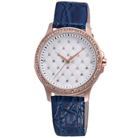 Skone new style ladies watches,valentine brand watches