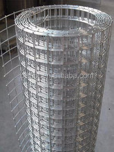dog wire kennels welded wire mesh/china galvanized welded wire mesh roll/hot galvanized welded wire mesh
