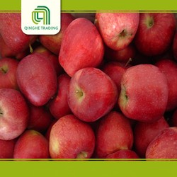 wholesale chinese mature fruit new crop 2011 for wholesales