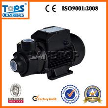 TOPS QB pedrollo water pump