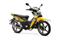 wolf cub motorcycle 110CC hot selling best seller beautiful design high quality
