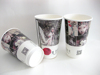 Customized Paper Cup / Hot Paper Coffee Cup / Paper for Paper Cup
