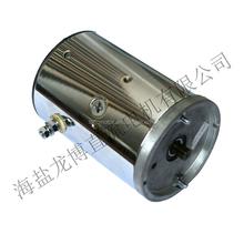 HY61020-1 12v dc motor