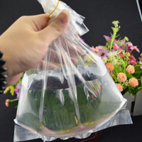 round bottom plastic bag , LDPE Polybags for packing fish , pe plastic bag