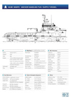 60.6m Anchor Handling Tug / Supply Vessel