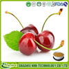 Natural Acerola Cherry Fruit Extract Powder