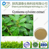 Factory Supply Herbal products Manufacturer Gymnema Sylvestre Extract 25% Gymnemic Acid