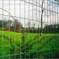 2015 New Artificial Holland wire mesh/Dog Ear Fence