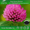 Factory supply Red Clover Extract,Isoflavones, Trifolium Pratense Extract plant extract