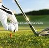 export PA material golf grass