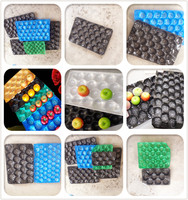 high quality disposable plastic PP fruit tray/fruit packing tray