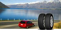 certificate tire 195/50R15 DK558