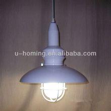 Ceiling designs Fiber Optic Pendant Light