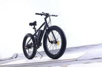 Fat bike,Magic price battery electric dirt bike