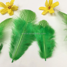 Factory Supply Colorful Sliver Pheasant Tails feather,pheasant feather