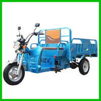 1000W Cargo Motor Hybrid Tricycle For Sale HT125ZH