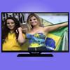 """CI module Scart 18.5"""" DVB-T2+S2 TV"""