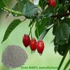 Agriculture Urea N46% fertilizer manufacturer