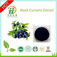 Natural Black Currant Concentrate Powder,High Quality Black Currant Seed Oil