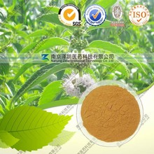 Factory Direct Supply Activating blood Natural Lycopus lucidus extract