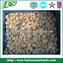Wholesale China import garlic in usa