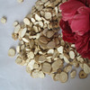 Factury supply good quantity Dahurian Angelica Root Herb Medicine