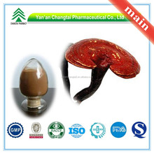 Hot Sale GMP Certificate 100% Pure Natural lucid ganoderma extract powder