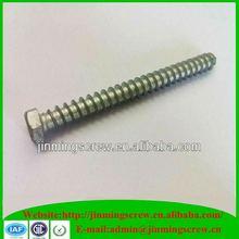 Manufactory kinds of screws