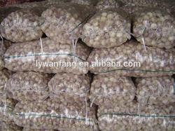 Certified GAP/ KOSHER/ HALAL Normal White Garlic