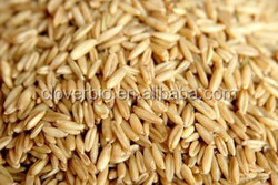 herbal extract powder form type and oat fiber powder