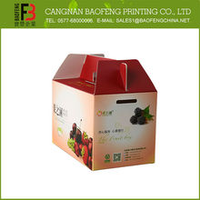 Disposable Popular Design Fruit Packaging Boxes