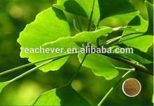 ginkgo biloba extract cosmetic grade GINKGO BILOBA EXTRACT