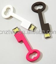 new arrival 2gb key shape usb flash drive factory price lowest price usb2.0 with customized logo