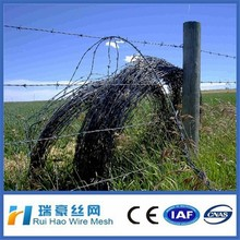 low price grass boundary galvanized barbed wire barbed wire