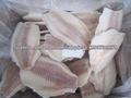 filete de tilapia congelada