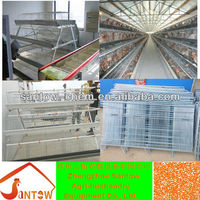 China manufacturer of ladder type chicken cage for poultry house