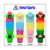 Rainbow Penny Style Skateboards Board Complete 22""