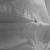 Disposable PP Bed Bug Proof Mattress Cover