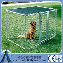 big dog house clamp connector dog runs solid roof dog kennels