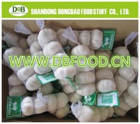 Pure white Garlic Granule 16-26mesh from shandong
