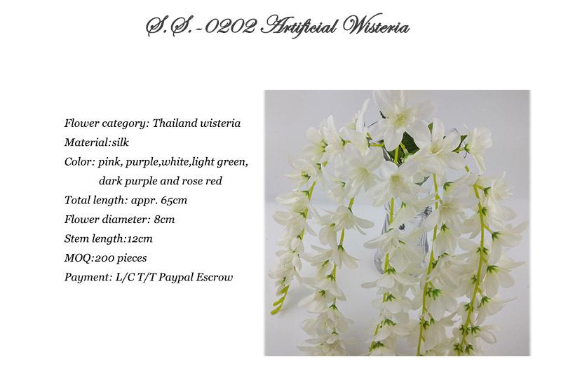 Orchids Wholesale Thailand Wholesale Orchids Thailand
